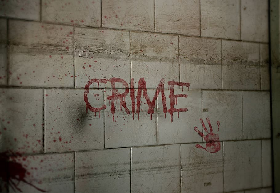 CRSS 102 - Introduction to theories of crime